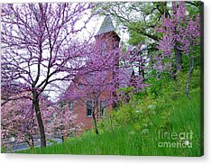 Spring Colors Acrylic Print by Edward Sobuta