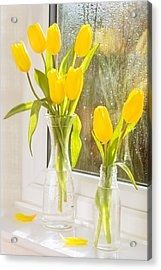 Spring Tulips Acrylic Print by Amanda Elwell