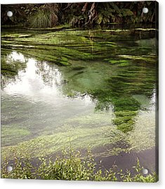 Spring Water Acrylic Print by Les Cunliffe