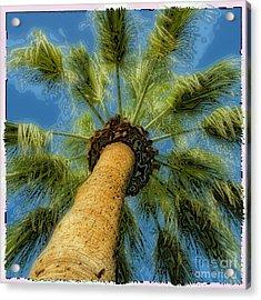 Square Polaroid Palm Tree Acrylic Print