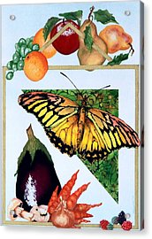 Acrylic Print featuring the painting Still Life With Moth #1 by Thomas Gronowski