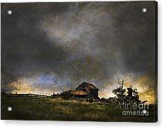 Summer Storm Acrylic Print by Theresa Tahara