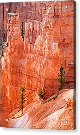 Sunrise Point Bryce Canyon National Park Acrylic Print