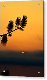 Acrylic Print featuring the photograph Sunset At Yosemite by Rima Biswas