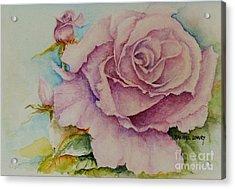 Susan's Rose Acrylic Print