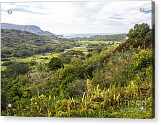 Acrylic Print featuring the photograph Taro Fields by Suzanne Luft