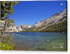 Tenaya Lake Acrylic Print by Rod Jones