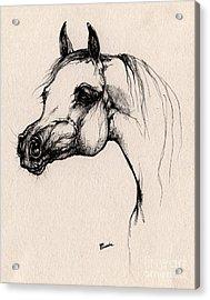 The Arabian Horse Acrylic Print by Angel  Tarantella