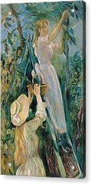 The Cherry Picker  Acrylic Print by Berthe Morisot