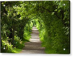 The Green Tunnel Acrylic Print