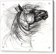 The Horse Sketch Acrylic Print