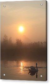 The Peace Of Dawn Acrylic Print by Linsey Williams