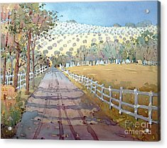 This Way To The Vineyard Acrylic Print