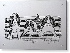 Acrylic Print featuring the drawing Three Puppies by Patricia Januszkiewicz