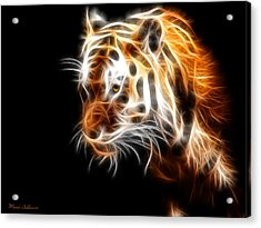 Tiger  Acrylic Print by Mark Ashkenazi