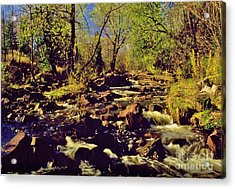 Tischer Creek Autumn Acrylic Print by Rory Cubel