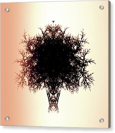 Tree Of Twigs Acrylic Print by Sharon Lisa Clarke