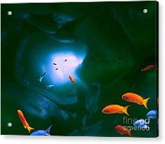 Tropical Sea Cave Acrylic Print