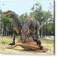 Tyrannosaurus Rex Dinosaurs Acrylic Print