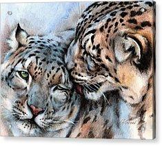 Unconditionally Snow Leopards Acrylic Print by Christine Karron