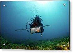 Underwater Survey Acrylic Print by Photostock-israel