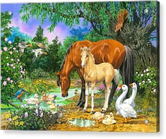 Foal And Mare By The Stream Variant 1 Acrylic Print by John Francis