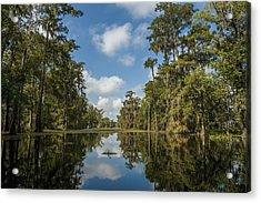 Usa, Louisiana, Swamp Landscape Breaux Acrylic Print by Dosfotos