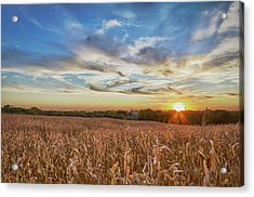 Usa, Nebraska, Near Omaha Acrylic Print by Christopher Reed