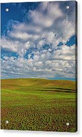 Usa, Washington State, Palouse, Spring Acrylic Print