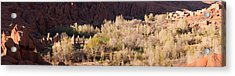 Village In The Dades Valley, Dades Acrylic Print by Panoramic Images