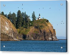 Wa, Cape Disappointment State Park Acrylic Print
