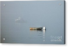 Waiting Dory Acrylic Print by Christopher Mace