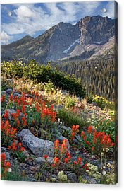 Wasatch Mountains Of Utah Acrylic Print