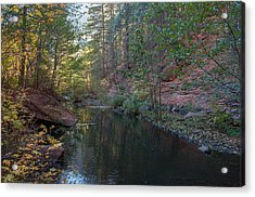 West Fork Acrylic Print by Tam Ryan
