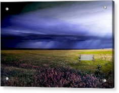 Acrylic Print featuring the photograph What If... by Yvonne Emerson AKA RavenSoul