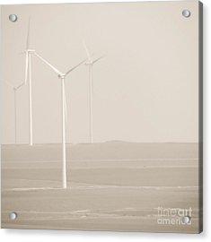 Windmills Acrylic Print by Gabriela Insuratelu