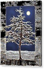 Winter Moon Acrylic Print by Ursula Freer