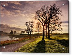 Acrylic Print featuring the photograph Winter Morning Shadows / Maynooth by Barry O Carroll