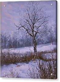 Winter Slumber Acrylic Print