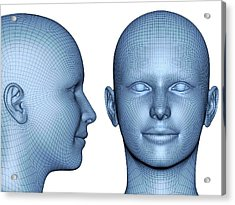 Wireframe Heads Acrylic Print by Alfred Pasieka