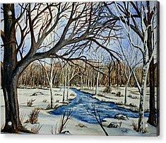 Wonderful Winter Acrylic Print by Thomas Kuchenbecker