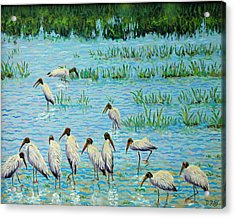 Wood Stork Discussion Group Acrylic Print by Dwain Ray