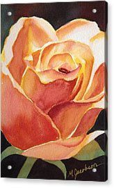 Yellow Rose Acrylic Print by Marilyn Jacobson