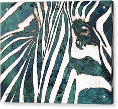 Zebra Art Stylised Drawing Art Poster Acrylic Print