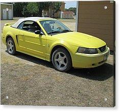 2003 Mustang Acrylic Print by Rosalie Klidies