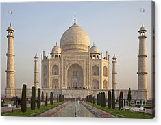 200801p089 Acrylic Print by Arterra Picture Library