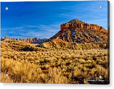 Late Afternoon Utah Acrylic Print by Christopher Holmes