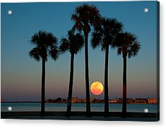 2011 Supermoon Acrylic Print
