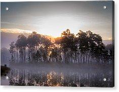 Foggy Sunrise At Long Pine Key Acrylic Print