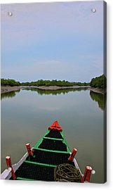 India, West Bengal, Sunderbans National Acrylic Print by Connie Bransilver